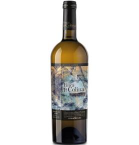 Vin blanc de garde Finca la Colina Dressage 2016 de Vinos Sanz - Rueda, Espagne