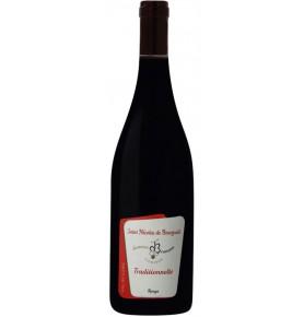 Bouteille de vin rouge Saint-nicolas-de-bourgueil 2017 AOP du domaine Damien Bruneau